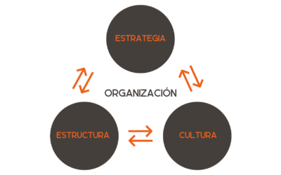¿Qué es primero, estrategia o estructura?
